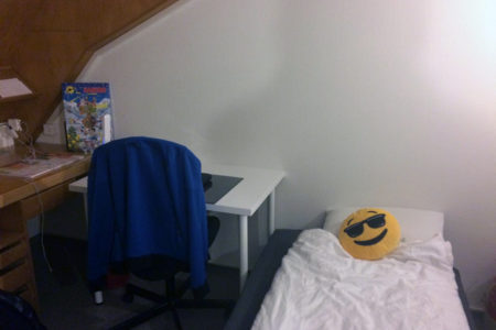 Max's new room after feng shui