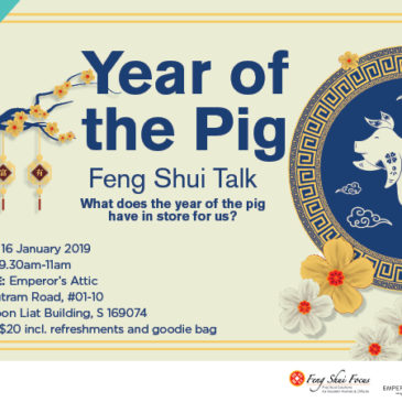 Year of the Pig- Feng Shui Talk