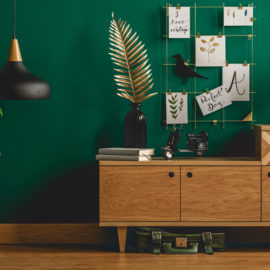 Green Wall Interior for Feng Shui Health