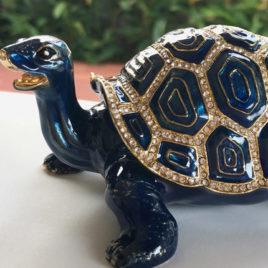 Lucky Tortoise